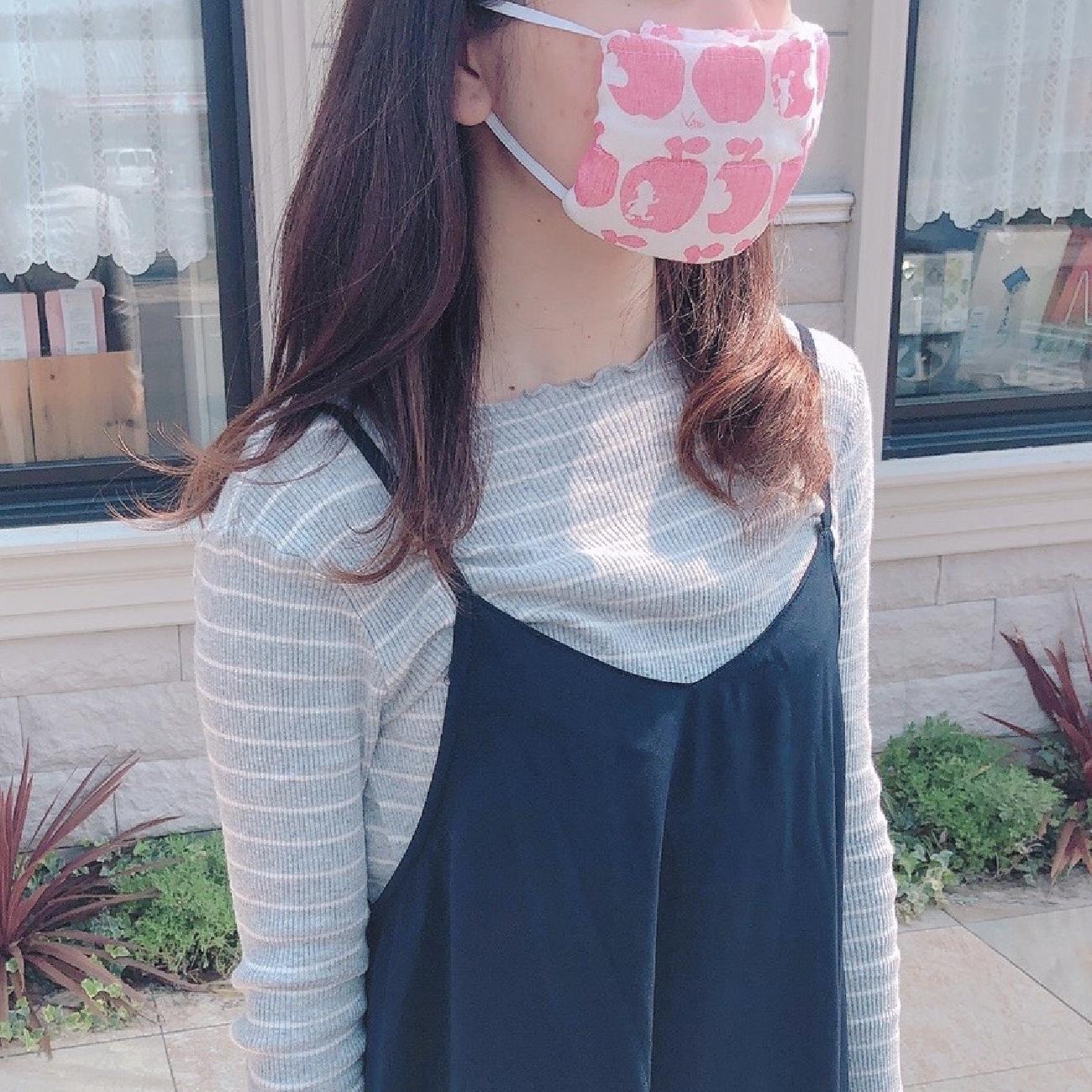 手作りマスク/マスク/白雪ふきん