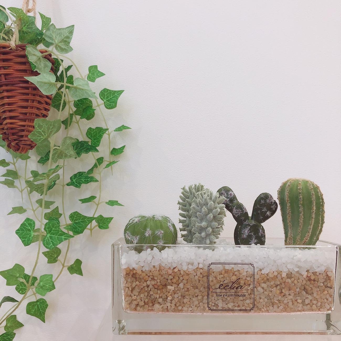 インテリア雑貨/アーティフィシャルグリーン/消臭/抗菌/おうち時間/フェイクグリーン